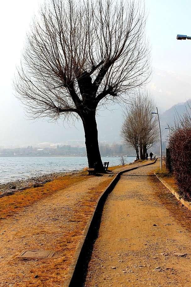 In bici sul Lago di Como