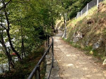 sentiero dell'olivo
