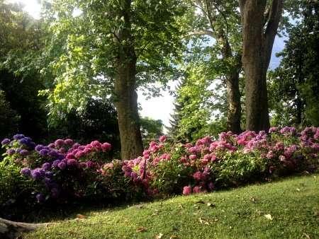 giardino villa carlotta