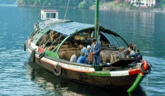 la transumanza sul Lago di Como